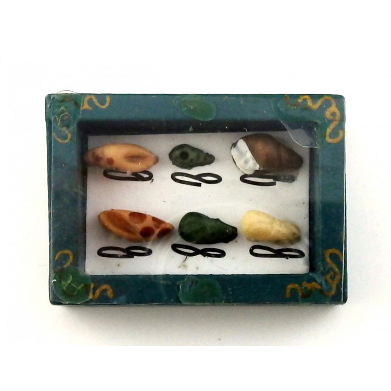 Dolls House Sea Shell Collage Picture Frame Nautical Beach Ornament
