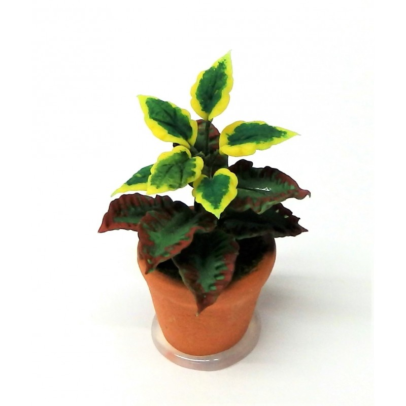 Dolls House Plant in Pot Miniature Home or Garden Accessory Type A