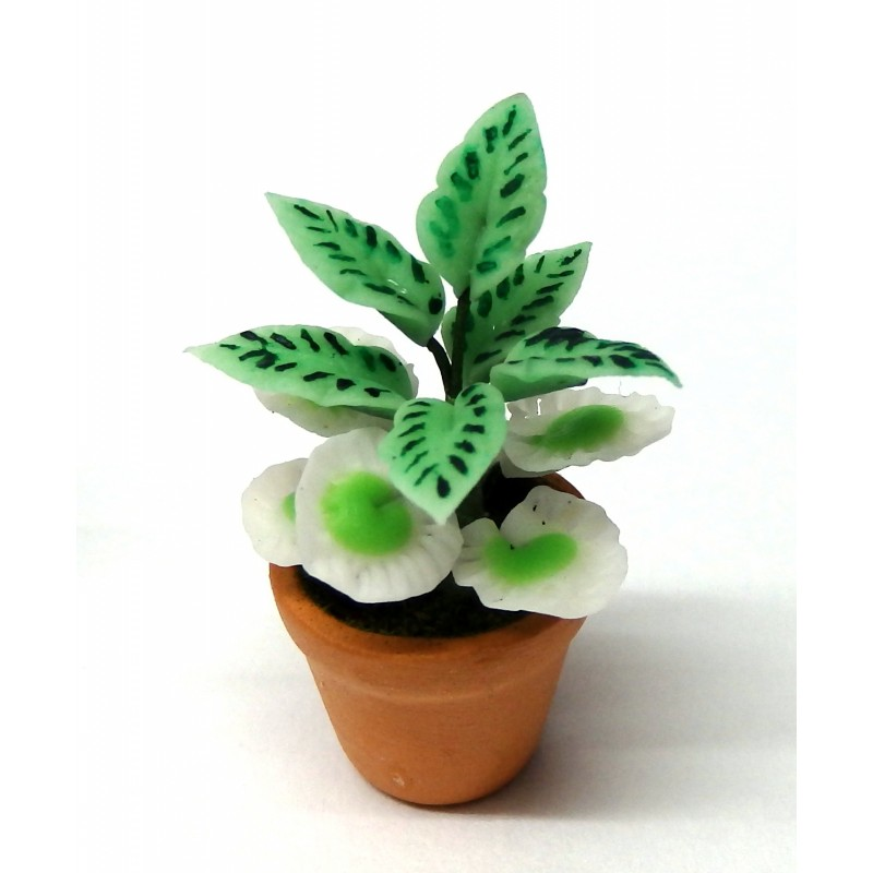 Dolls House Plant in Pot Miniature Home or Garden Accessory Type B