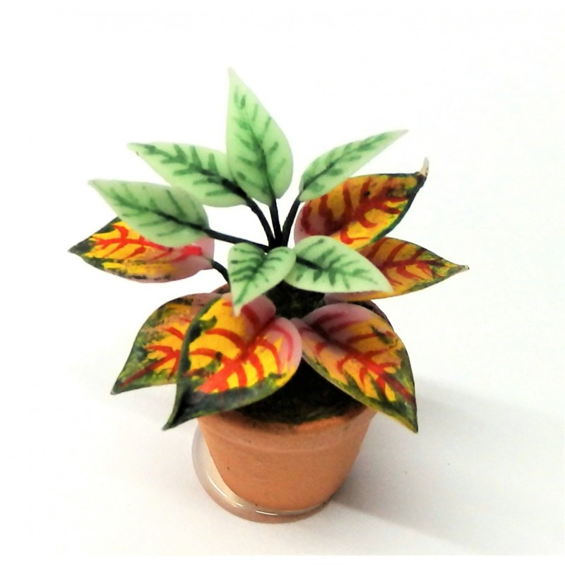 Dolls House Plant in Pot Miniature Home or Garden Accessory Type D