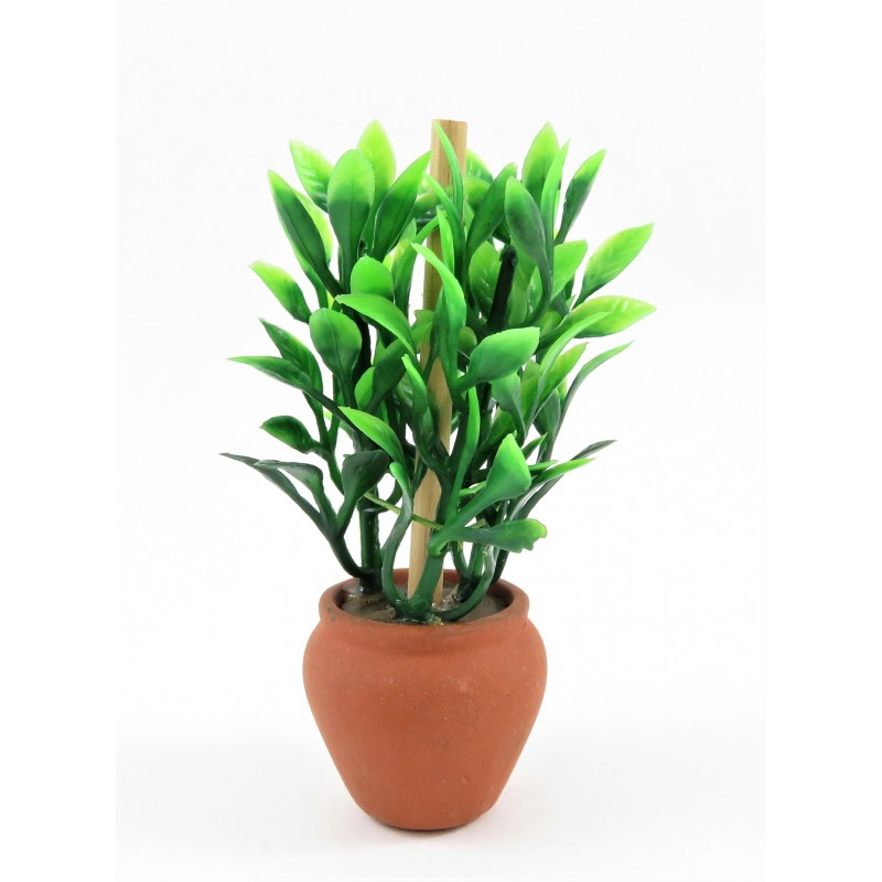 Dolls House Tall Green Leaf Plant in Clay Terracotta Plant Pot Garden Accessory