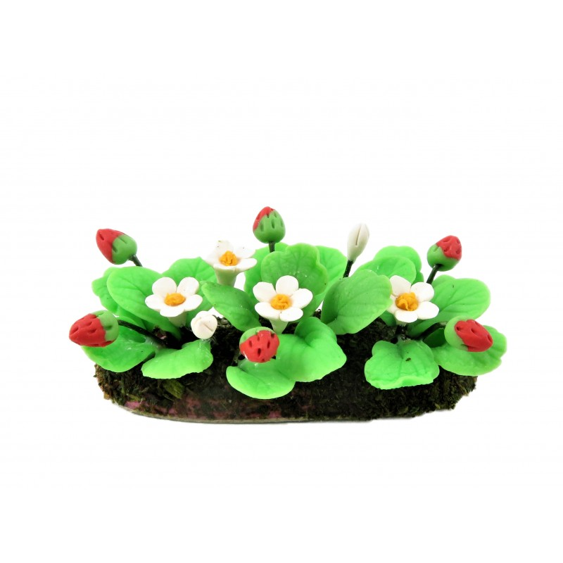 Dolls House Flowering Strawberry Plants in Ground Soil 1:12 Garden Accessory