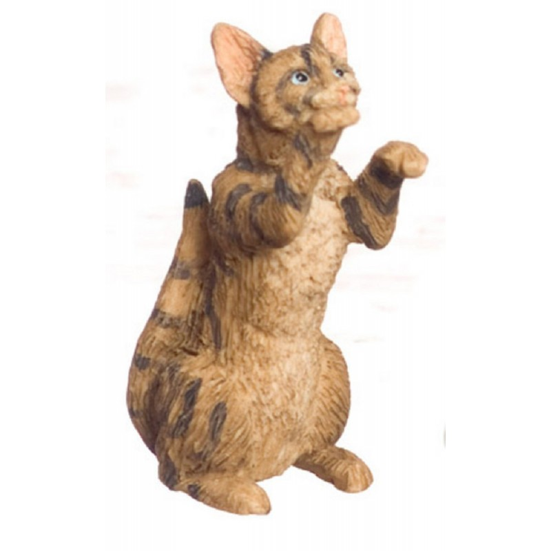 Dolls House Brown Cat on Hind Legs Begging Miniature 1:12 Scale Pet Animal