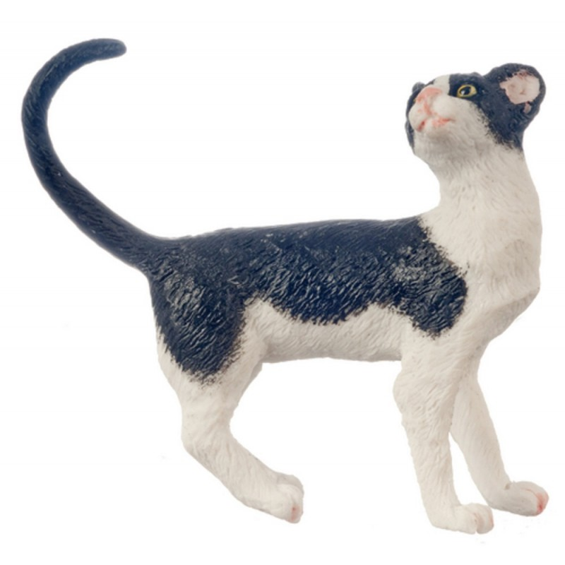 Dolls House Black & White Cat Standing Looking Back Tail Curl 1:12 Pet
