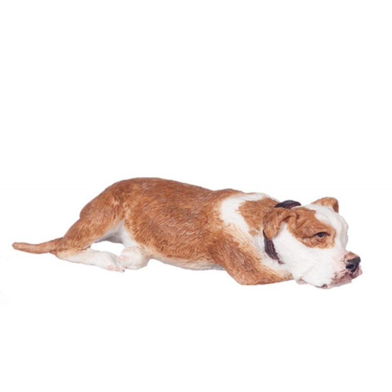 Dolls House Red Fawn Brindle Boxer Lying Down Miniature Pet Dog 1:12 Scale
