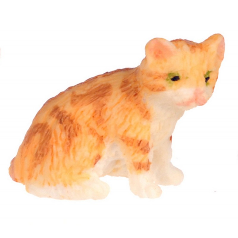 Dolls House Orange Kitten Sitting Falcon Miniature Accessory Pet Cat 1:12