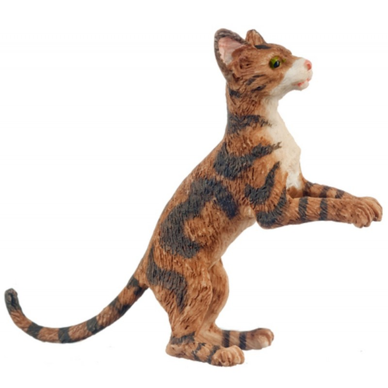 Dolls House Brown Cat Rising Up After Something 1 :12 Scale Miniature Pet