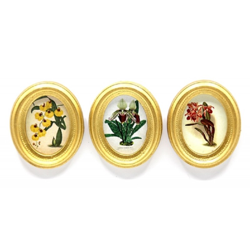 Dolls House 3 Botanical Orchid Painting Pictures Gold Frames Miniature Accessory