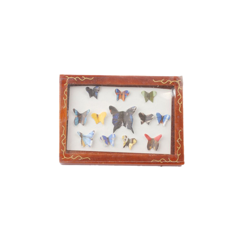 Dolls House Butterfly Display Box Collage Picture Frame Ornament Accessory 1:12