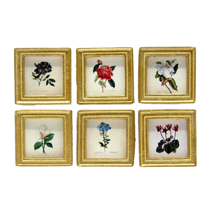 Dolls House 6 Botanical Flower Pictures Paintings Gold Frame Miniature Accessory