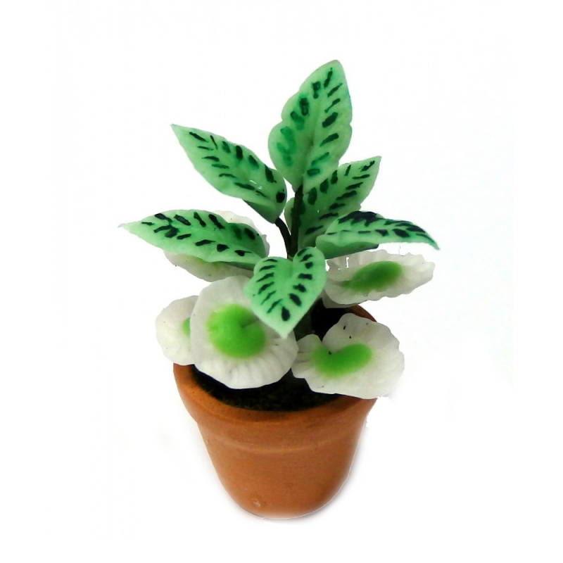 Dolls House Plant in Terracotta Pot Miniature Home or Garden Accessory Type B