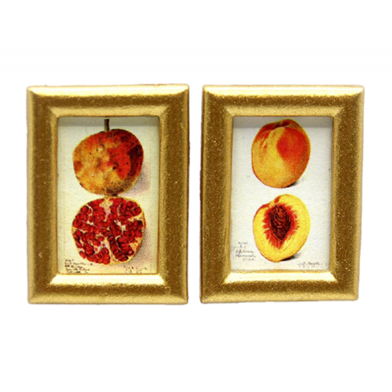 Dolls House 2 Botanical Fruit Pictures Small Paintings Gold Frame 1:12 Accessory
